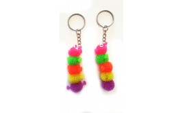 מחזיקי מפתחות תולעת צבעונית