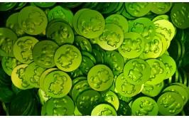 מארז 1/2 קילו מטבעות שוקולד חלב צבע ירוק