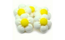 פרחים לבנים מבצק סוכר