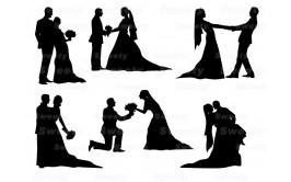 שקף טרנספר חתונה 701